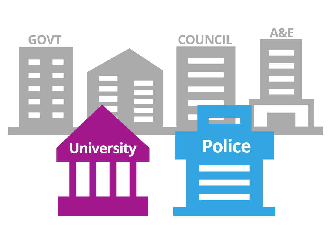 Different types of building illustrations to represent government, police, university, council, etc