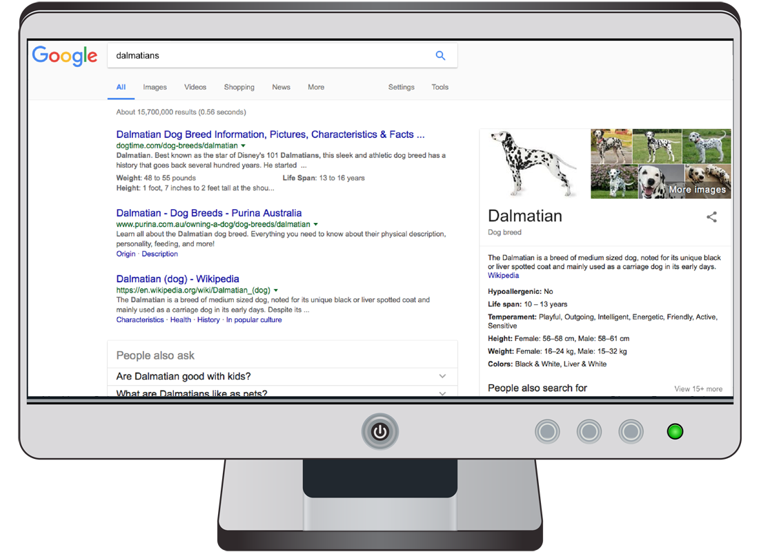 A computer screen showing the search results of a Google search on dalmatian dogs