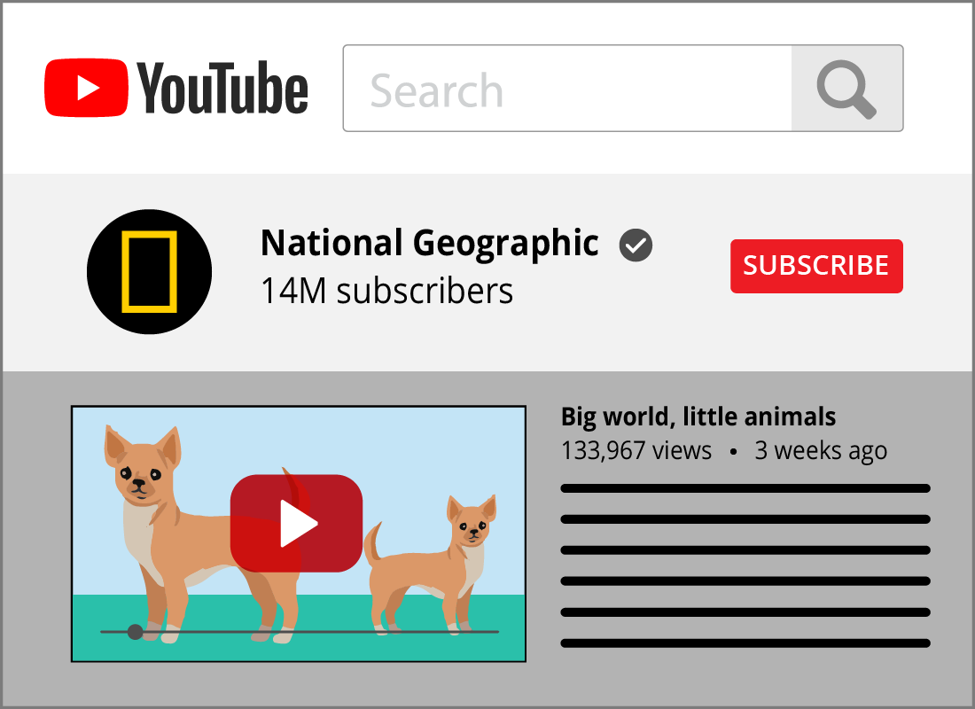 YouTube has videos on almost any subject under the sun, some are amateur videos and others are produced by professional tv companies, businesses and academics.