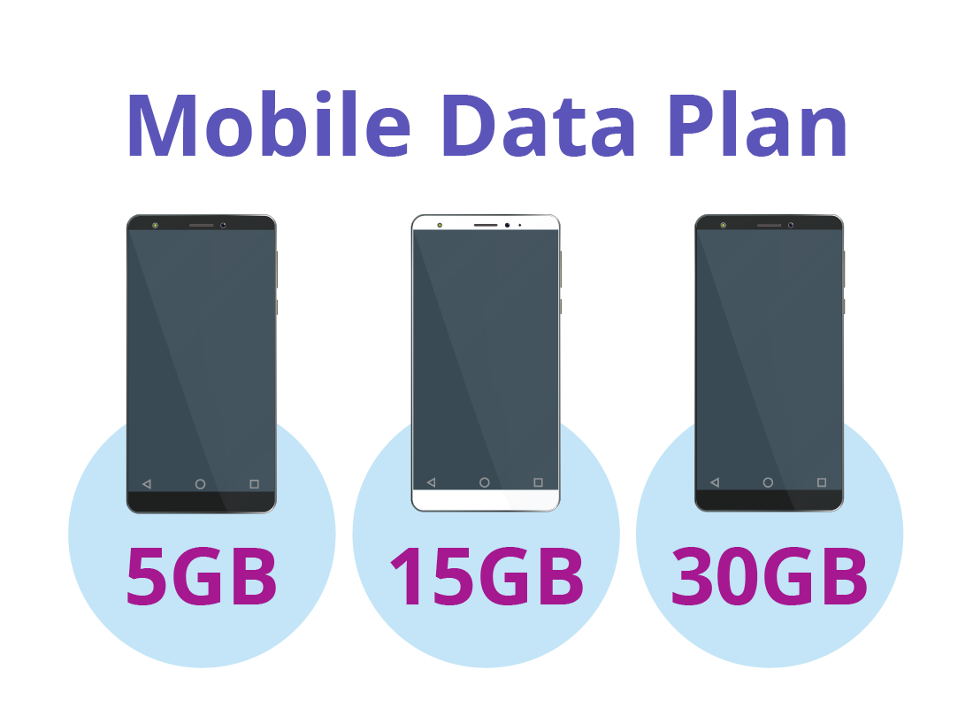 A diagram showing different levels of data on different mobile plans