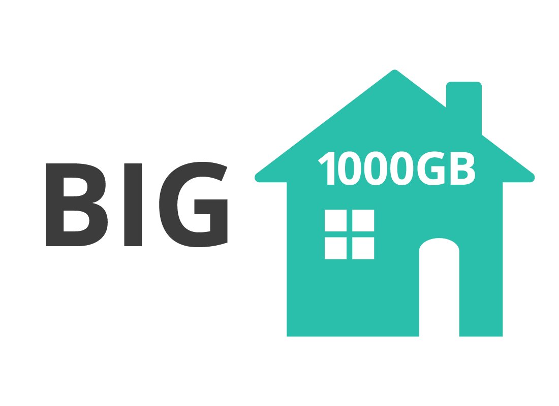 A big plan for a home internet is 1000GB
