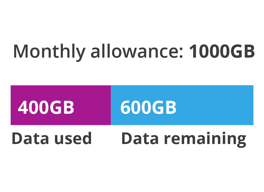 A diagram displaying only 1GB of data is left on the plan