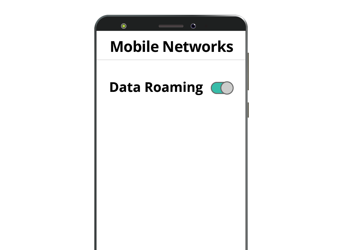 A mobile phone screen showing the Data Roaming option set to 'on' in settings