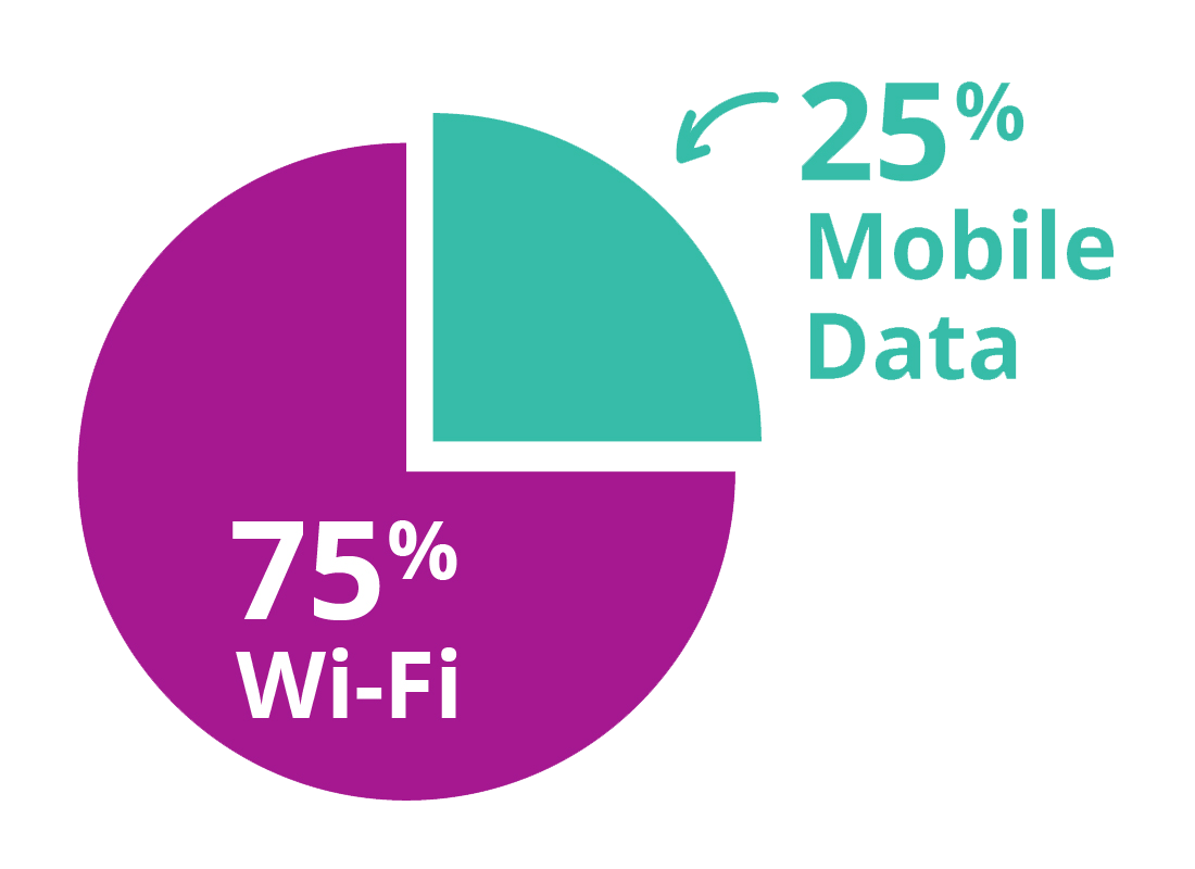 A pie chart showing how much mobile data allowance has been used compared to how much the cheaper Wi-Fi data has been used by apps