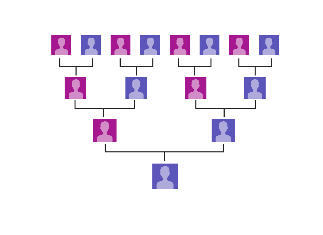 A family tree starts to grow as more links are created